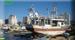 الاحتلال يستهدف قوارب الصيادين شمال القطاع
